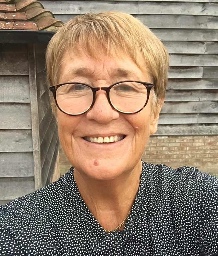 Honorary Fellow Professor Denise Lievesley smiles while standing in the sunshine next to a shed