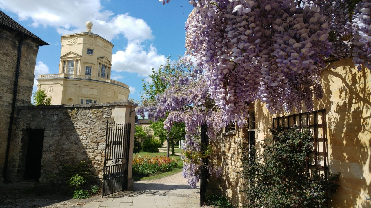 Gtc+observatory+and+wisteria