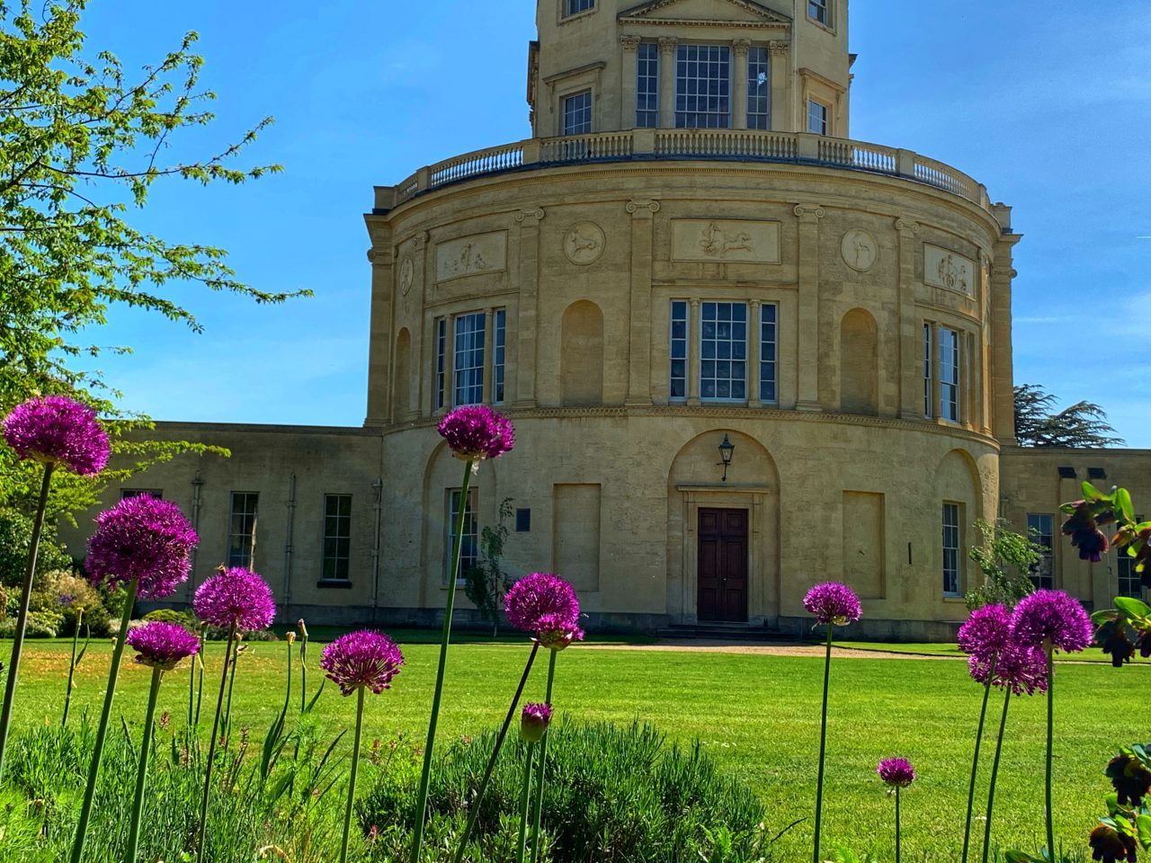 Flowers in front of the Radcliffe Observatory at Green Templeton College