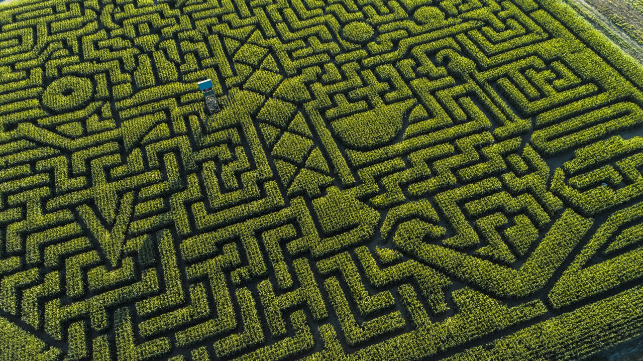 The aerial view to the huge Halloween's Corn Maze in Pennsylvania, Poconos Region, at sunset