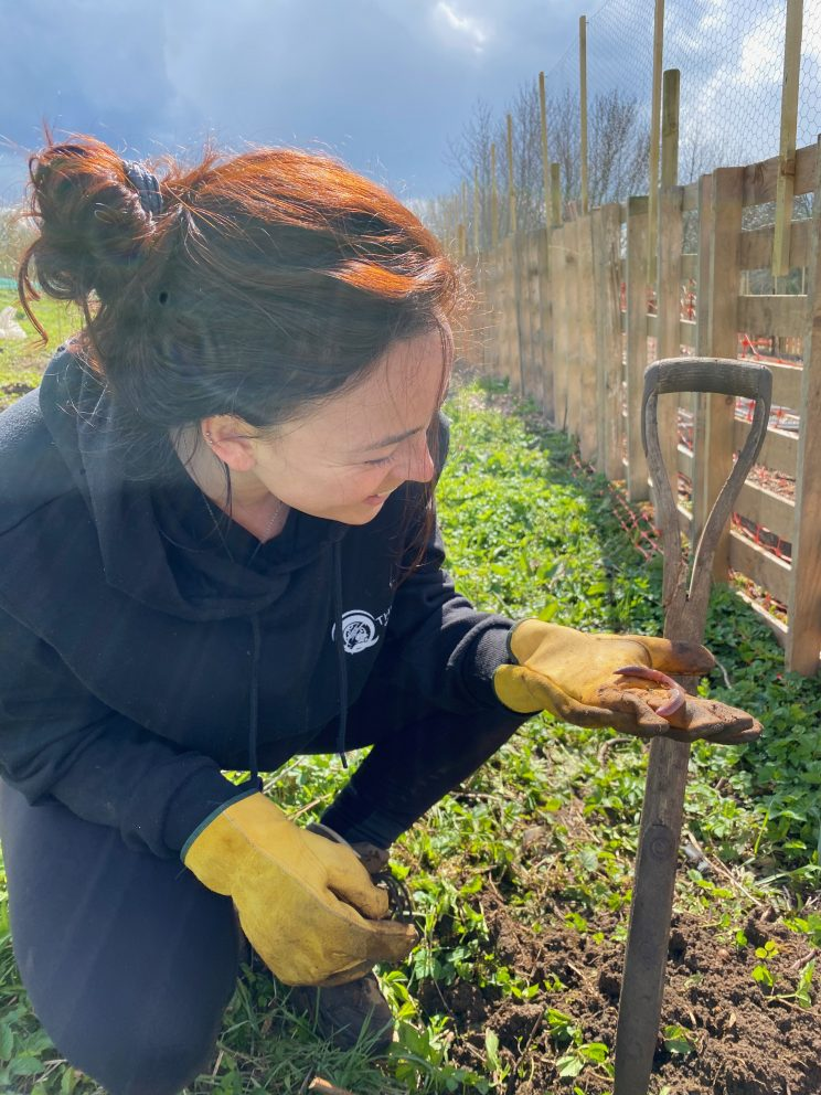 An allotment club member examining soil in her hand while digging