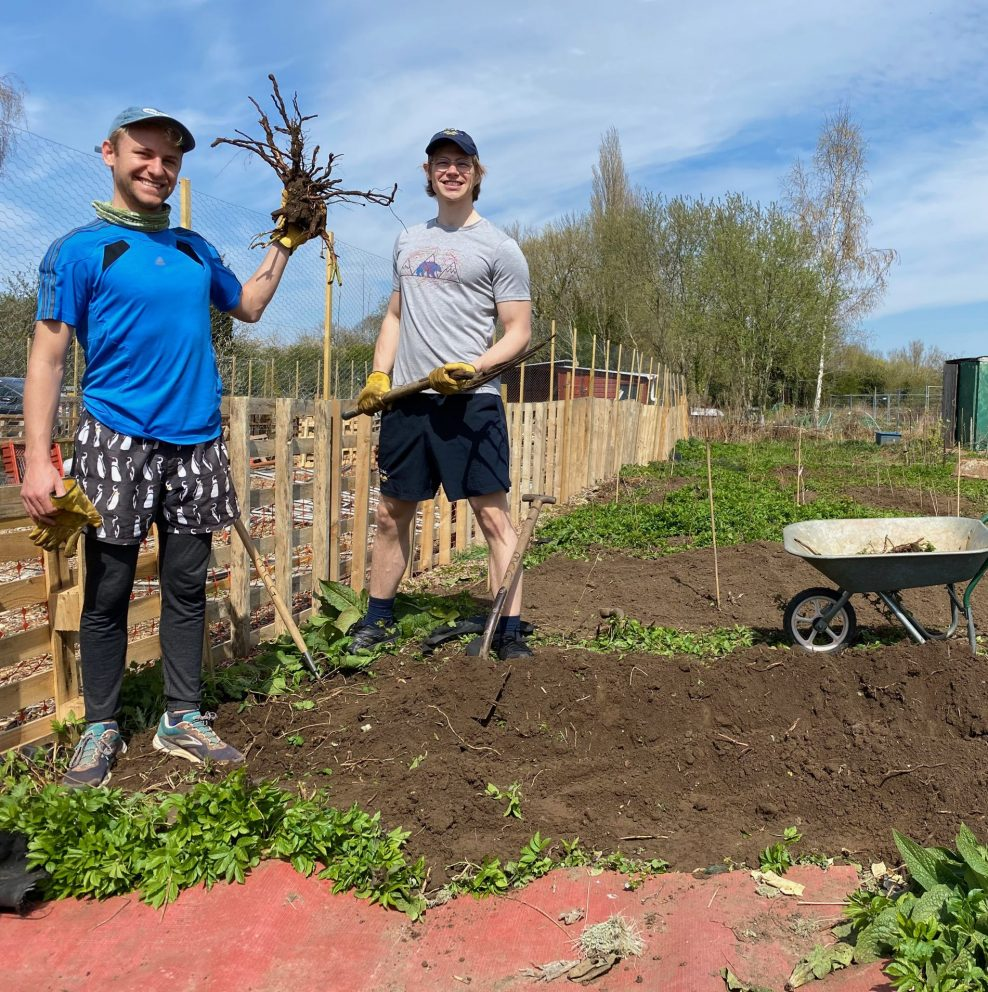 Two allotment team members survey a freshly planted soil bed